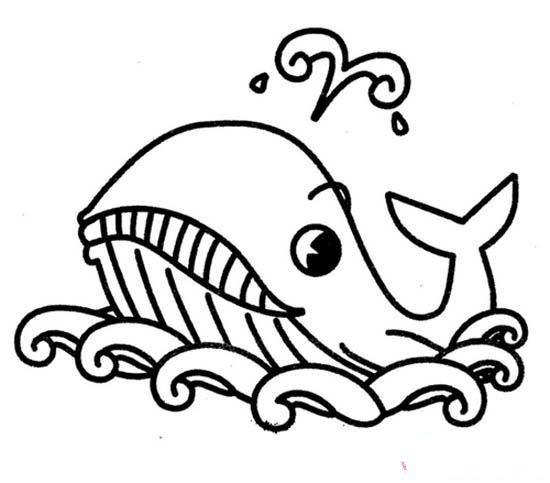 少儿梦幻鲸鱼简笔画图片