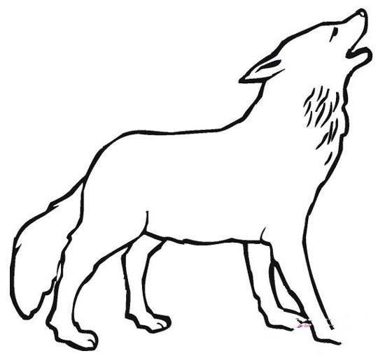 霸气的狼简笔画图片