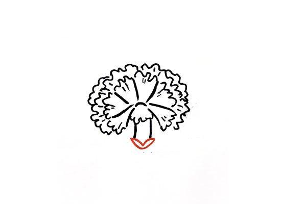 第七步:画两瓣小叶子。
