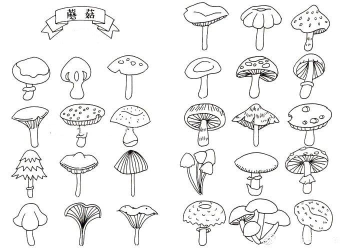 蘑菇黑白手帐素材大全