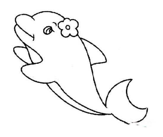 可爱雌性海豚简笔画图片